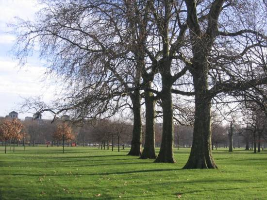 Hyde Park HydePark