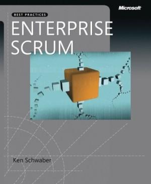 Enterprise and Scrum